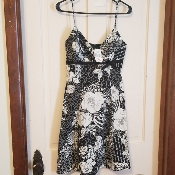 City Triangles Dresses & Skirts - NWT city triangles black and white dress